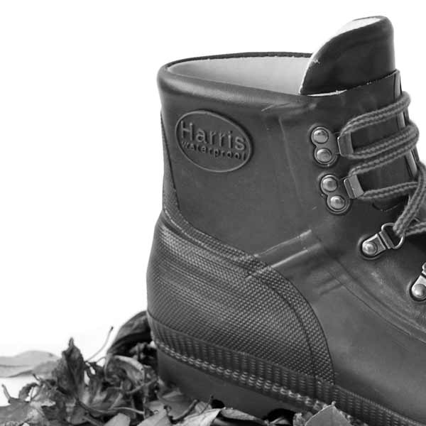Footwear from Harris, Viking Dryboot and Aigle